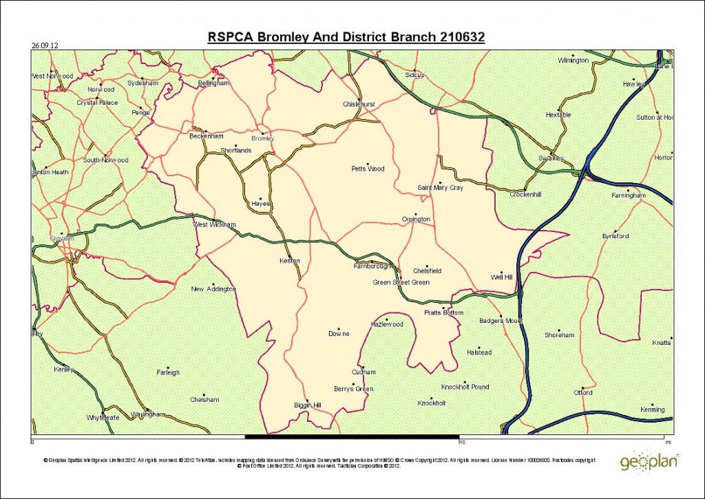 RSPCA Bromley & District Branch